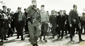 Dragoljub-Mihajlovic