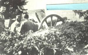 srpska artiljerija